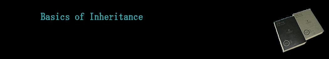 basic-inheritance